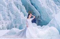 婚纱摄影及婚庆常用鲜花花语-深圳蒙娜丽莎